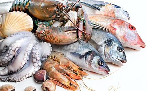 Свежий улов морской живности