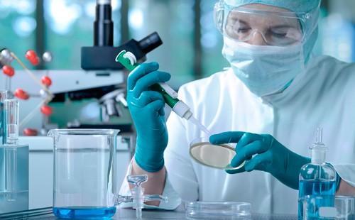 Исследование молекул ДНК в лаборатории