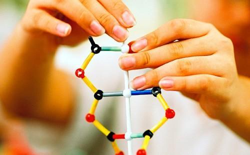 Модель молекул ДНК трогают руками