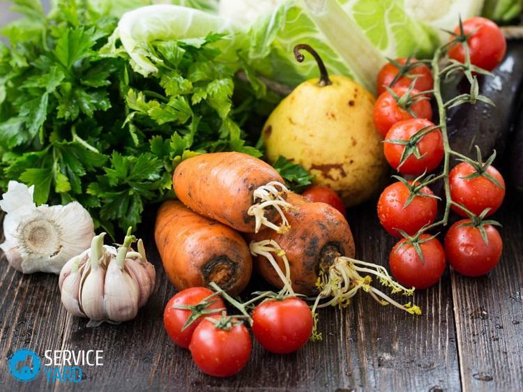 frukty_i_ovoshchi_naturalnye_istochniki_vitaminov