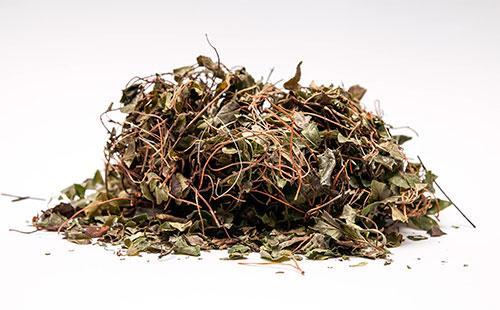 Сушенные корни и листья боровой матки